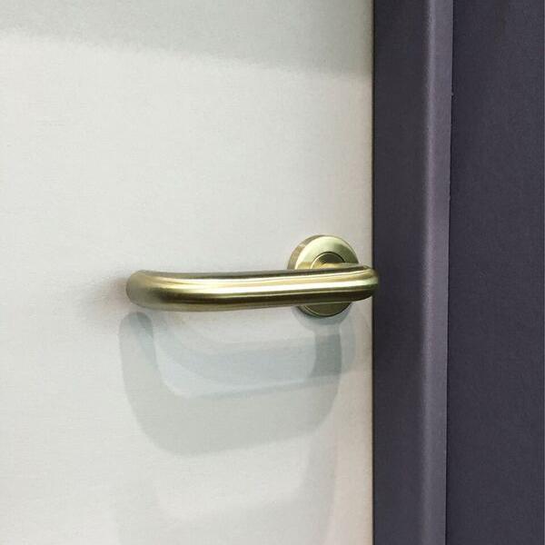 Shadclean-door-and-frame-with-door-handle